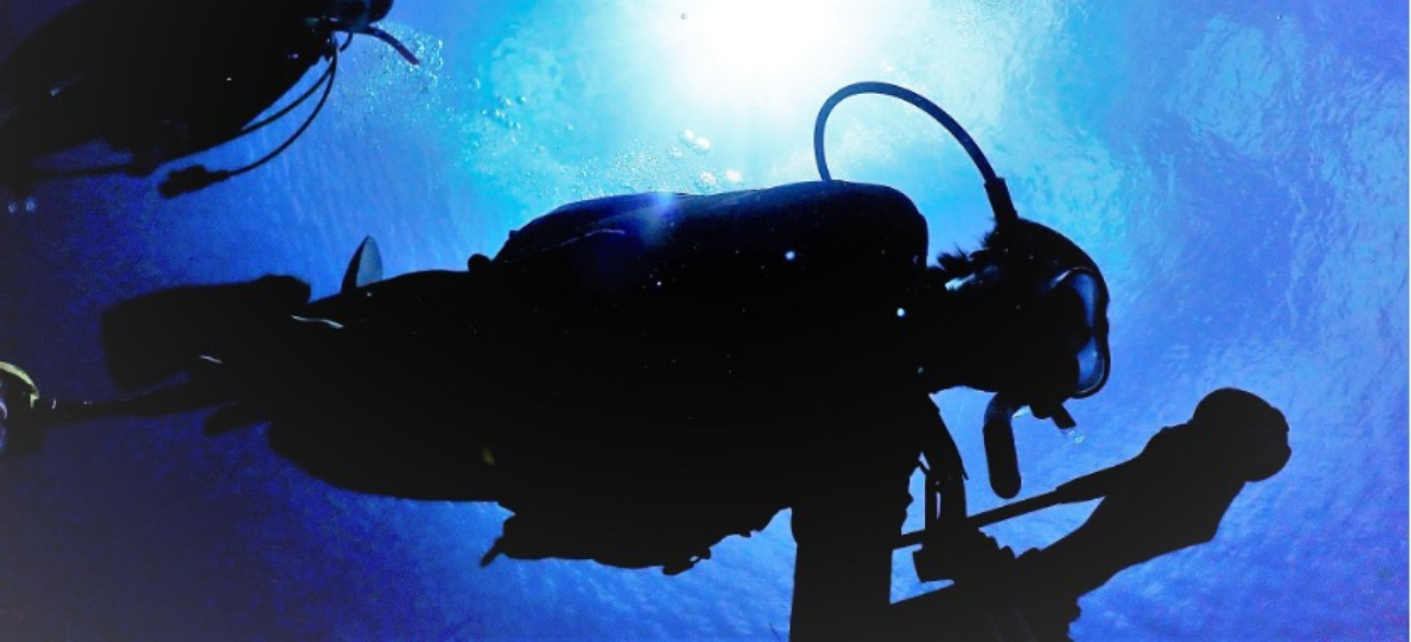 ダイバーになって、絶景の水中世界へデビューしよう!