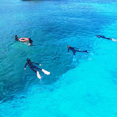 待ちに待ったケラマ諸島の海をのぞいてみましょう。