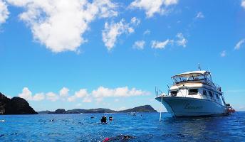 ▸沖縄のスノーケリング&体験ダイビング