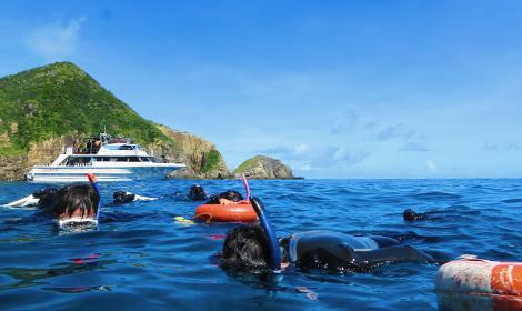 浮潜&体验潜水
