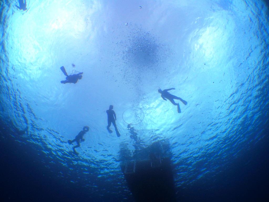 黒潮の海でシュノーケリングを楽しむ