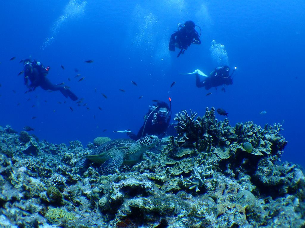 水中世界!!