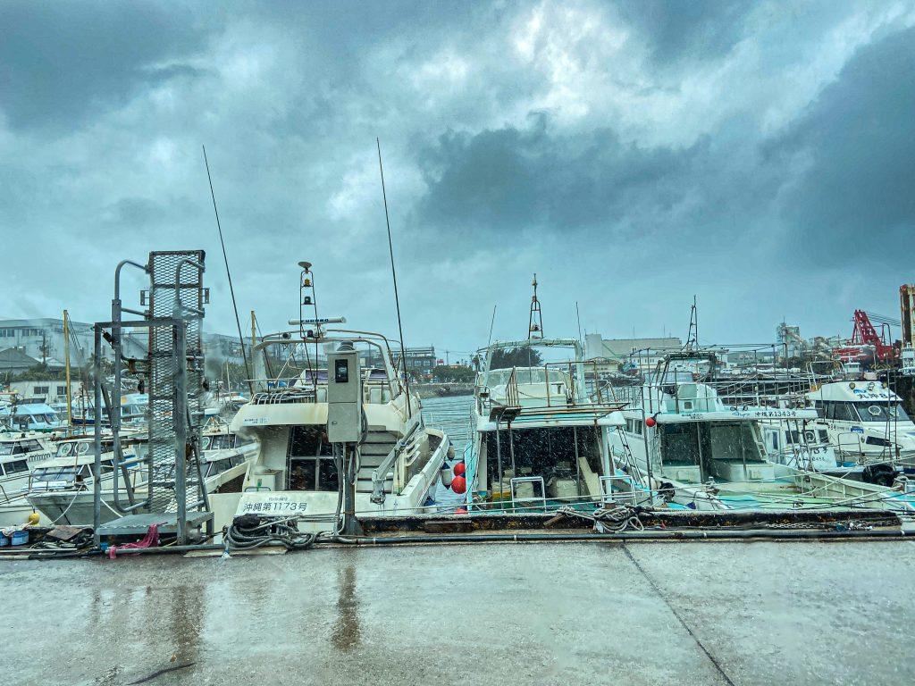 台風接近中の今日は…